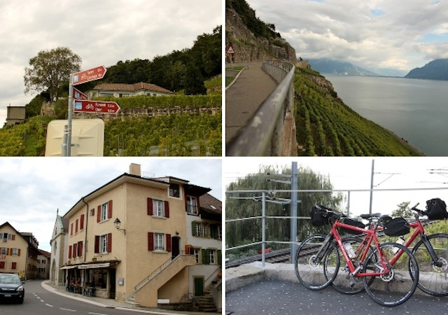 Lavaux Swiss Experience